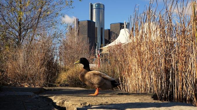 Detroit's River Walk [Michigan Slot Machine Casino Gambling in 2020]