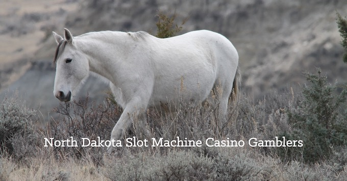North Dakota Slots Community on Facebook [North Dakota Slot Machine Casino Gambling in 2020]