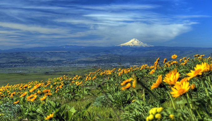 Oregon Slot Machine Casino Gambling 2018: Mount Hood, also called Wy'east by the Multnomah tribe of Oregon.