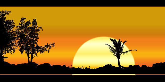 Hawaiian Sunset with Trees [Hawaii Slot Machine Casino Gambling 2018]