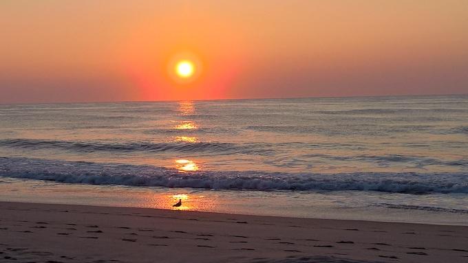 Ocean City Beach at Sunrise [Maryland Slot Machine Casino Gambling in 2021]